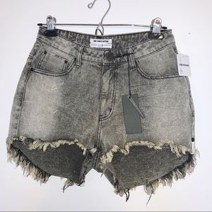 FREE PEOPLE One X One Teaspoon Denim Shorts